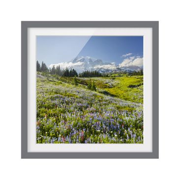 Product picture Framed print - Mountain Meadow With...