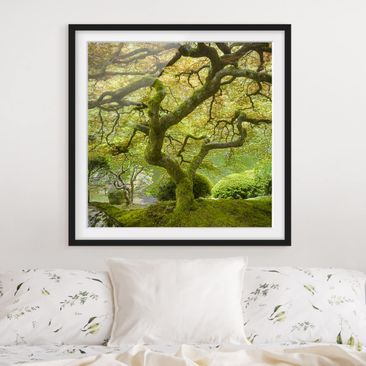 Product picture Framed print - Green Japanese Garden -...