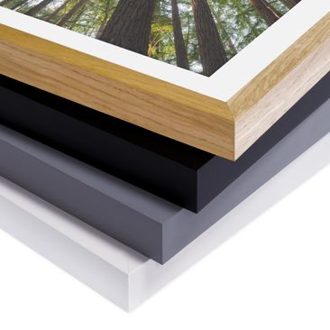 Product picture Framed print - Sequoia Tree Tops -...