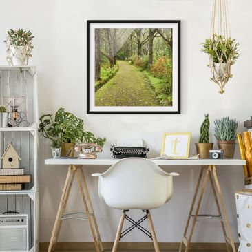 Product picture Framed print - Road Clad In Moss -...