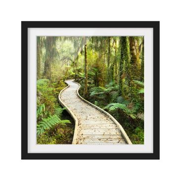 Product picture Framed print - Path In The Jungle -...
