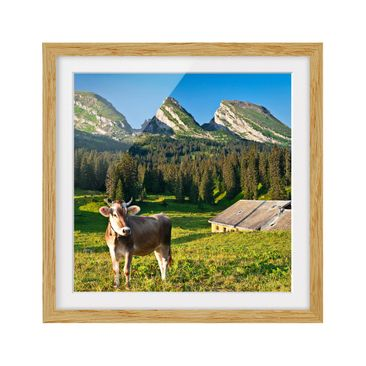 Product picture Framed print - Swiss Alpine Meadow With...
