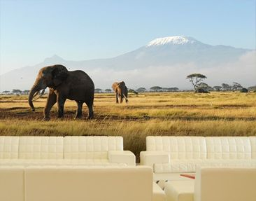 Immagine del prodotto Carta da parati adesiva - Elephants In Front Of The Kilimanjaro In Kenya