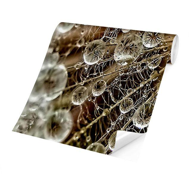 Produktfoto Tapete selbstklebend - Pusteblume im Herbst - Fototapete Querformat