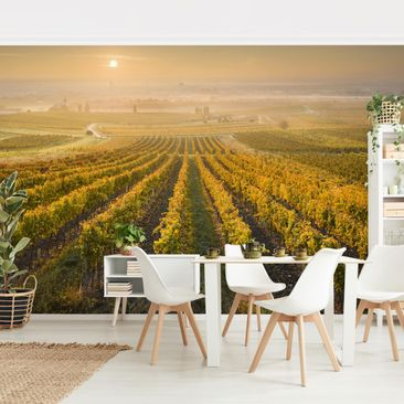 Product picture Photo Wall Mural - Autumnal Vineyards...