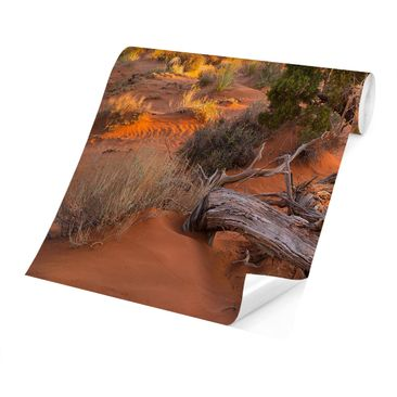 Product picture Photo Wall Mural - Monument Valley...