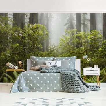 Product picture Photo Wall Mural - Misty Forest Path -...