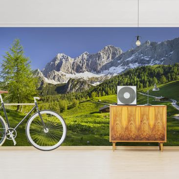 Product picture Photo Wall Mural - Styria Alpine Meadow...