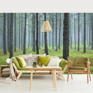 Product picture Photo Wall Mural - Deep Forest With Pine...