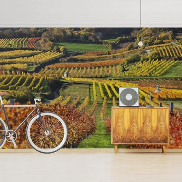 Product picture Photo Wall Mural - View From The Vine...
