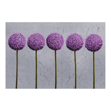 Product picture Photo Wall Mural - Allium Ball Flower -...