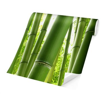 Product picture Photo Wall Mural - Bamboo Trees -...