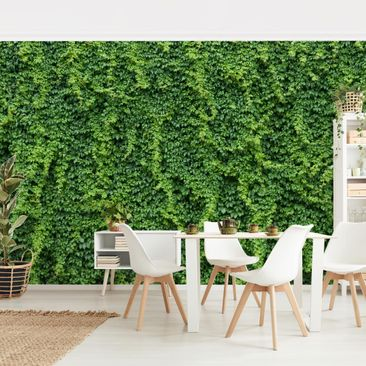 Product picture Photo Wall Mural - Ivy - Self-adhesive...
