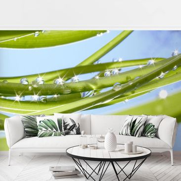 Produktfoto Photo Wall Mural - Fresh Green -...