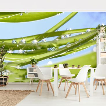 Product picture Photo Wall Mural - Fresh Green -...