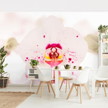 Product picture Photo Wall Mural - Dotted Orchid On...