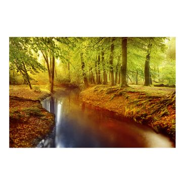 Product picture Photo Wall Mural - Autumn Forest -...