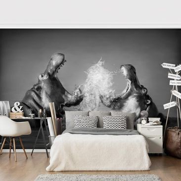 Product picture Photo Wall Mural - Hippo Fight -...