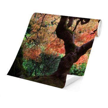 Product picture Photo Wall Mural - Japanese Garden -...