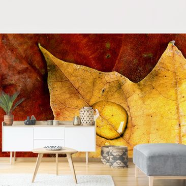 Product picture Photo Wall Mural - Magical Leaf -...