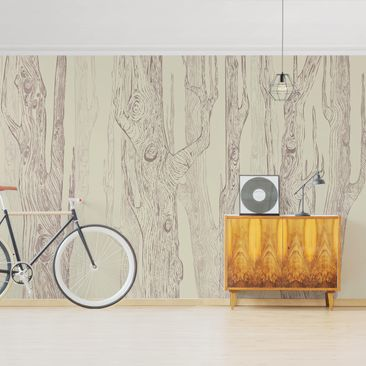 Product picture Photo Wall Mural - No.MW20 Living Forest...