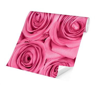Product picture Photo Wall Mural - Pink Roses -...