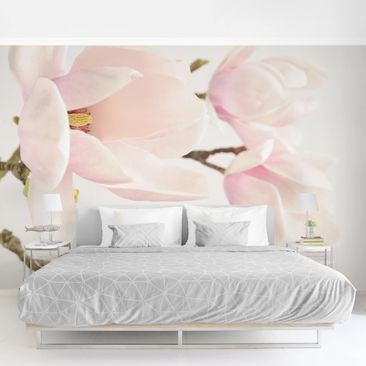 Product picture Photo Wall Mural - Royal Magnolia -...