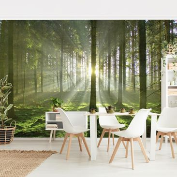 Product picture Photo Wall Mural - Spring Fairytale -...