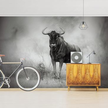 Product picture Photo Wall Mural - Staring Wildebeest -...