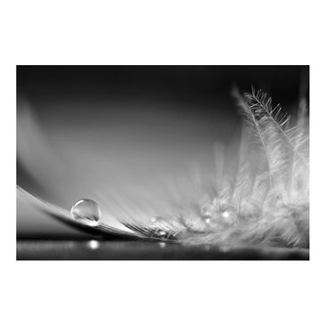 Product picture Photo Wall Mural - Story Of A Water Drop...