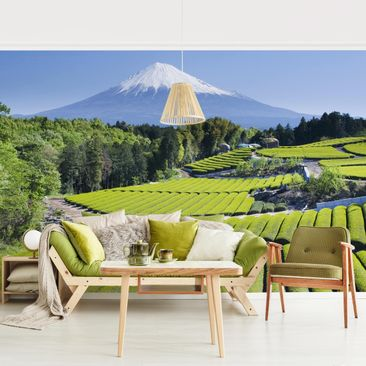 Product picture Photo Wall Mural - Tea Fields In Front...