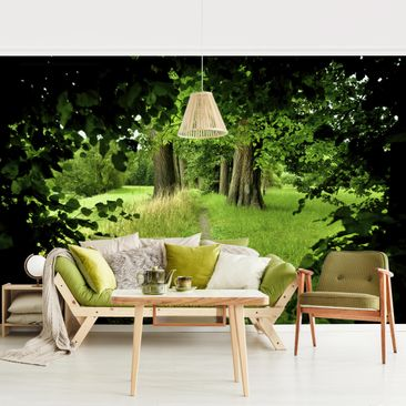 Product picture Photo Wall Mural - Hidden Glade -...