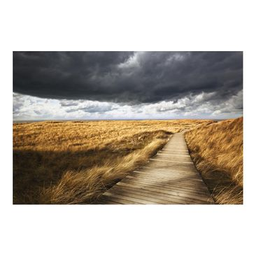 Product picture Photo Wall Mural - Way In The Dunes -...