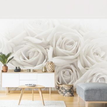 Product picture Photo Wall Mural - White Roses -...