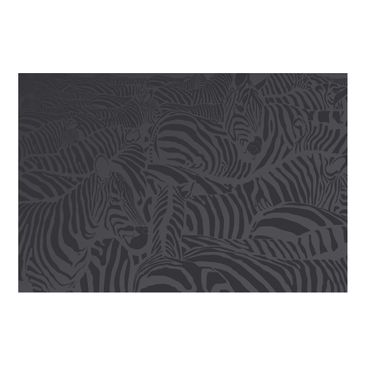 Product picture Photo Wall Mural - No.DS3 Zebra Stripe...
