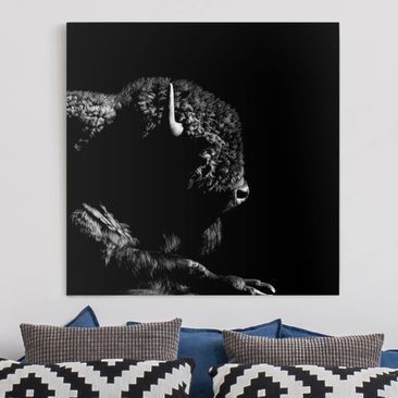 Product picture Canvas Art - Bison In The Dark - Square...