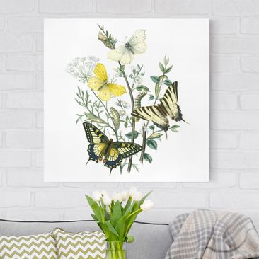 Product picture Canvas Art - British Butterflies III -...