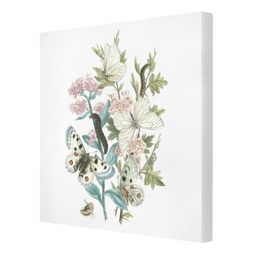 Product picture Canvas Art - British Butterflies I -...