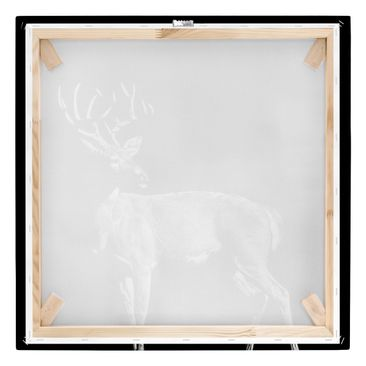 Product picture Canvas Art - Deer In The Dark - Square...