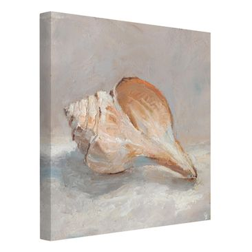 Product picture Canvas Art - Shell Study III - Square...