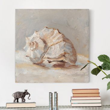Product picture Canvas Art - Shell Study II - Square 1:1