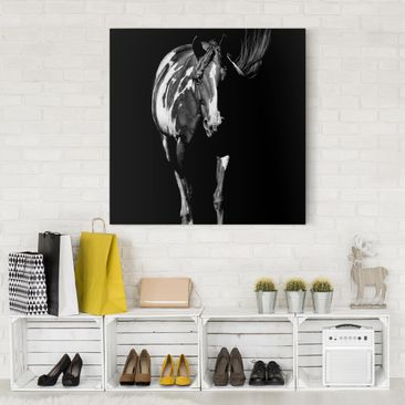 Product picture Canvas Art - Horse In The Dark - Square...