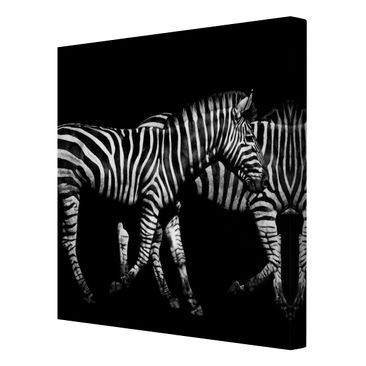 Product picture Canvas Art - Zebra In The Dark - Square...