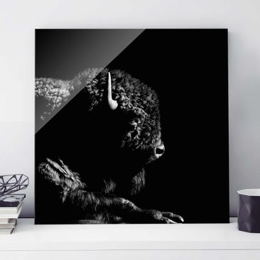 Product picture Print on Glass - Bison In The Dark -...