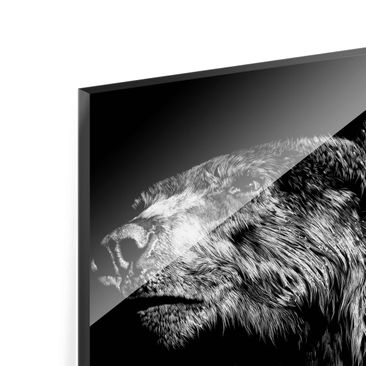 Product picture Print on Glass - Bear In The Dark -...