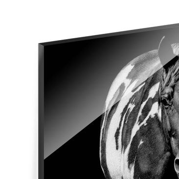 Product picture Print on Glass - Horse In The Dark -...