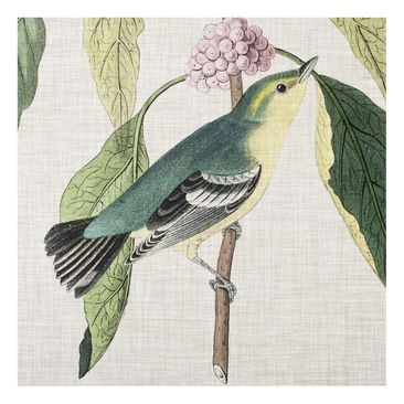 Product picture Print on Glass - Bird On Linen Pink I -...