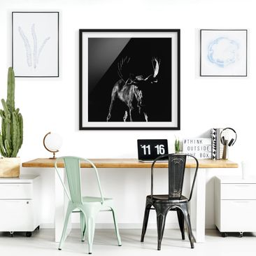Product picture Framed print - Bull In The Dark - Square...