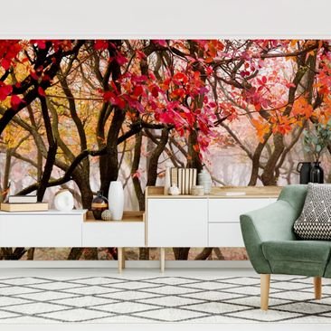 Product picture Photo Wall Mural - Japan In Autumn -...