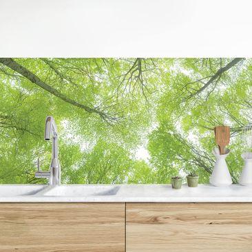Immagine del prodotto Rivestimento cucina - Foresta verde dal basso